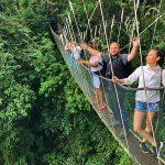 Kinabalu Park Canopy Walk