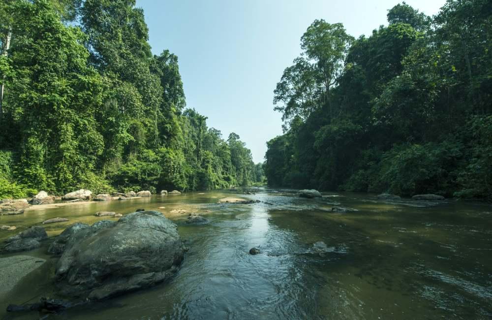 Ulu Muda: A Date With Nature